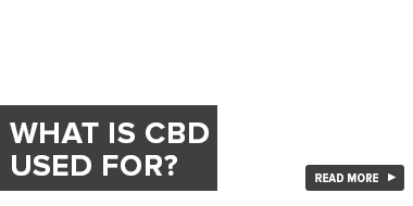 What Is CBD Used For?